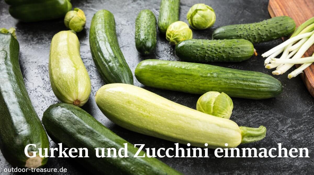 Gurken und Zucchini einmachen